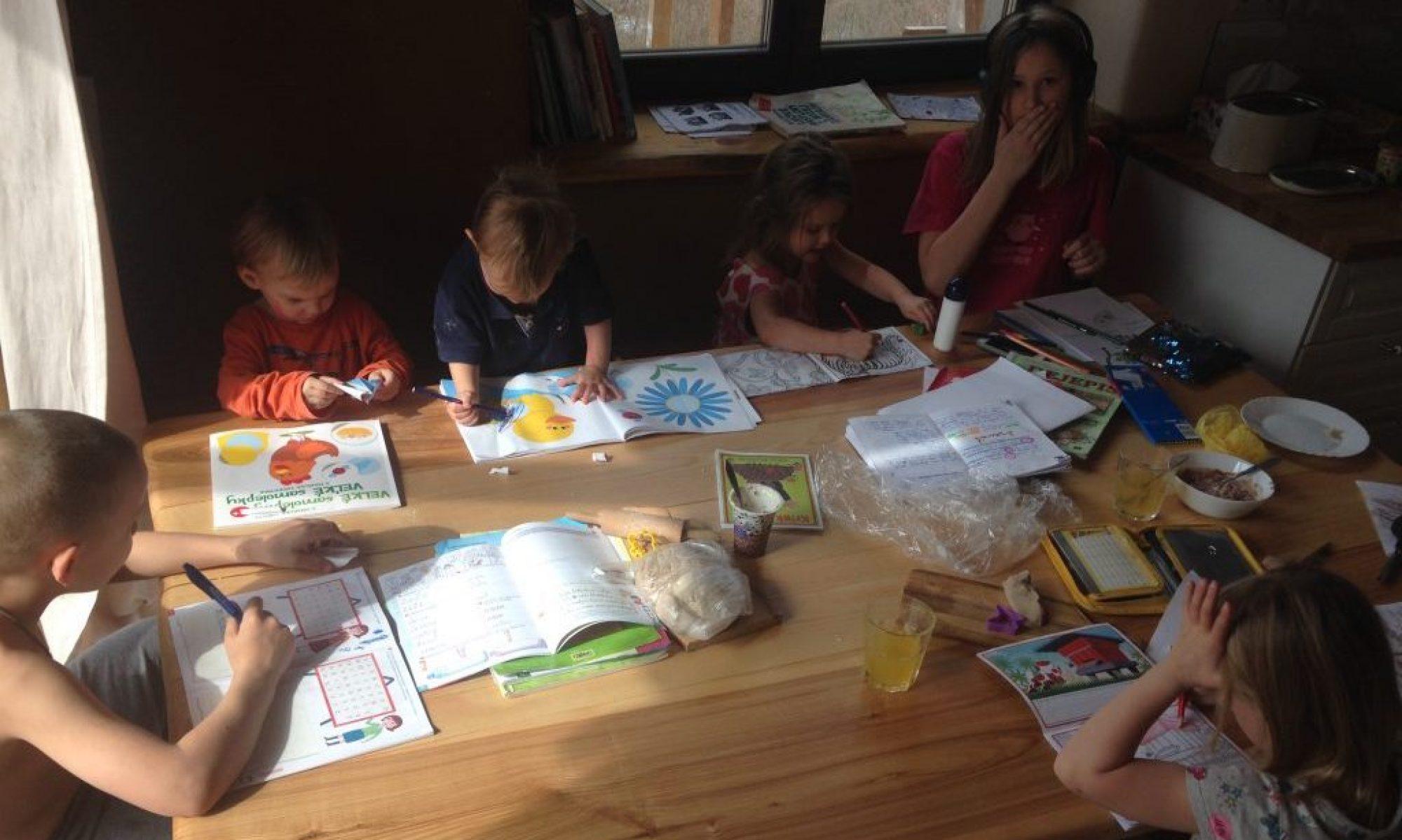 OZ Domáce vzdelávanie na Slovensku